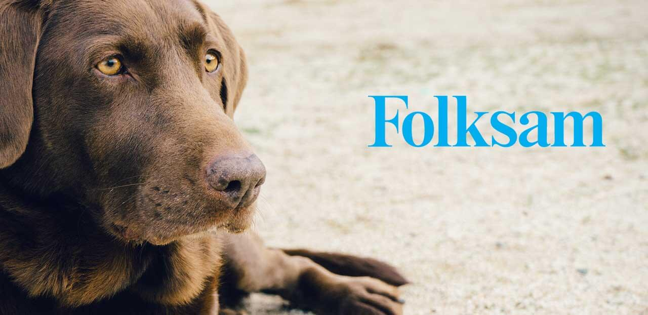 folksam hundforsakring logo